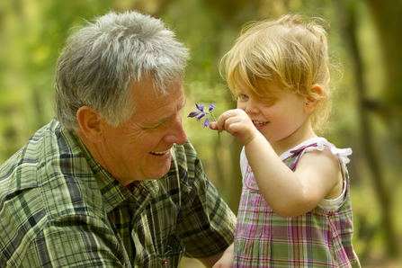 A smiling toddler holds up a flower to her grandfather